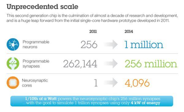 IBM presenta Synapse, un chip simile al cervello umano